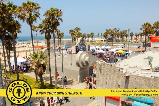 Muscle Beach-2