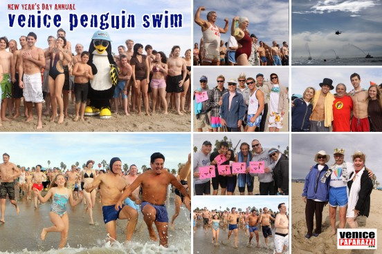 penguin-swim-web-552x368