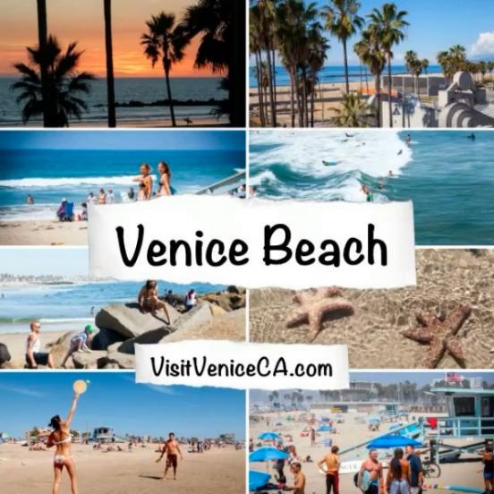 VisitveniceCA.com
