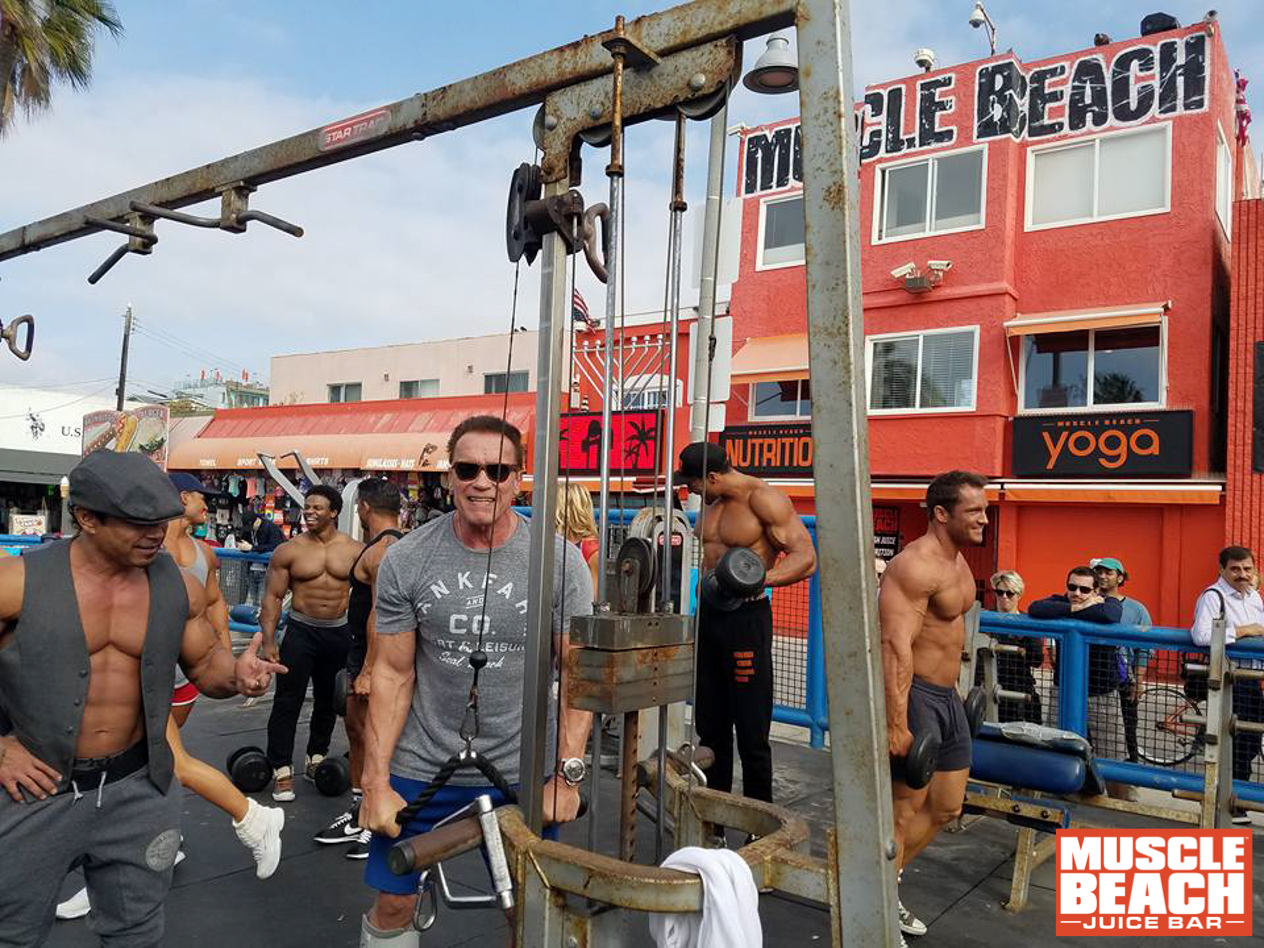 muscle-beach-nudity-asian-porn-search-engines