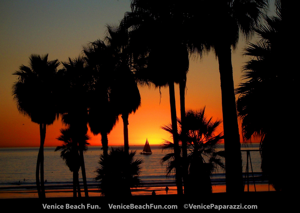 Venice Beach Sunset. Venice, California Photo by www.VenicePaparazzi.com