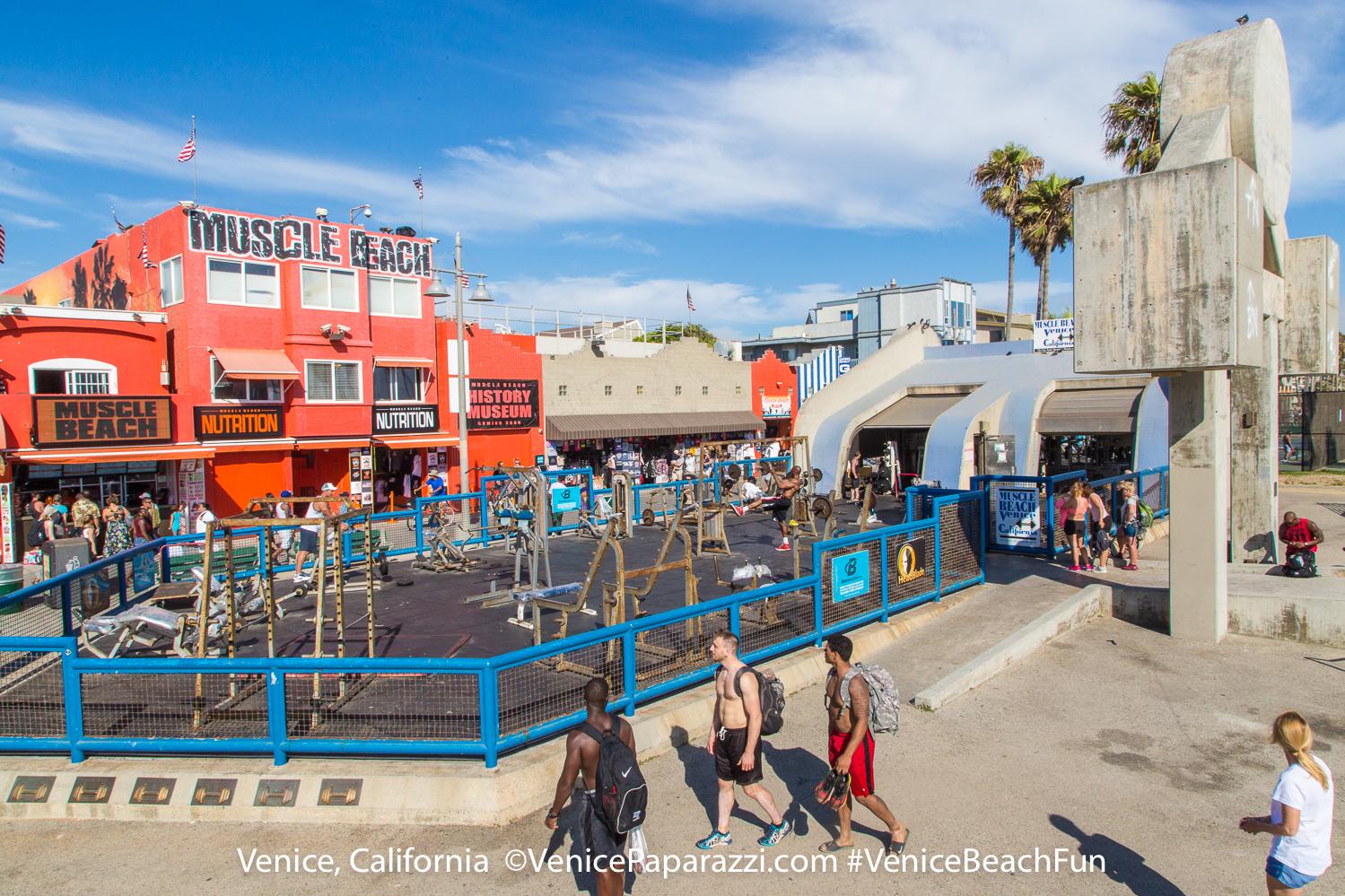 Venice Beach Live Cams